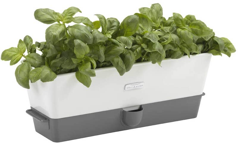 Buy Cole & Mason self watering planter